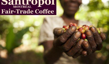 Santropol Coffee Roasters